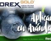 VIDEO: TIMOREX GOLD APLICACIÓN EN ARÁNDANOS